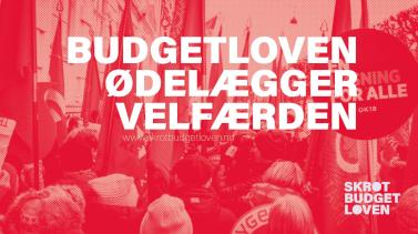 Tirsdagsaktioner: Bannerborg mod budgetloven